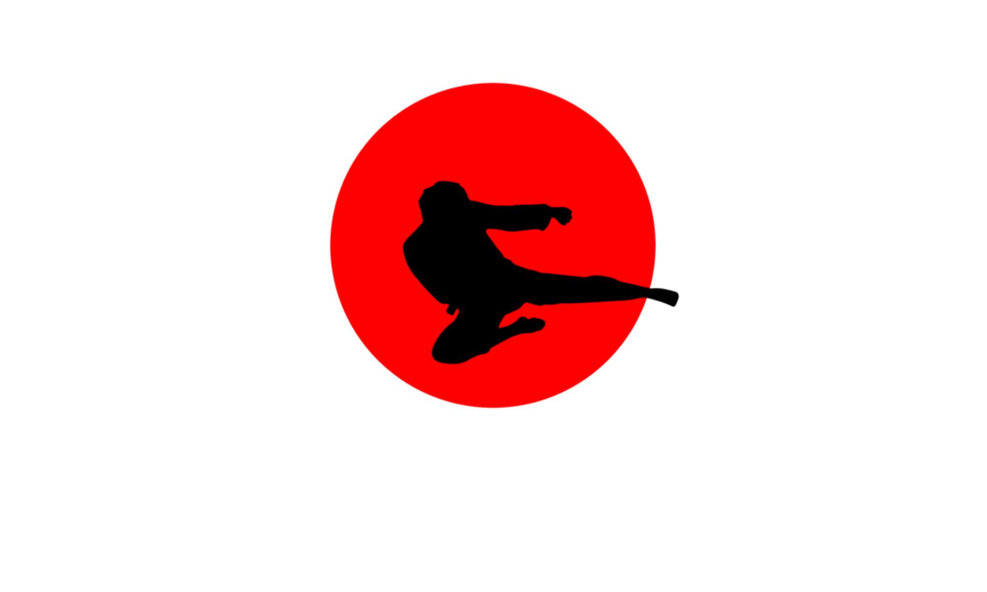 Wadokai Karate